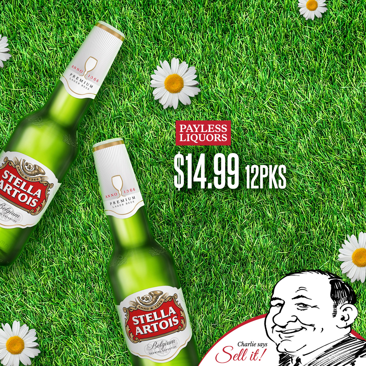Stella Artois 12-Packs
