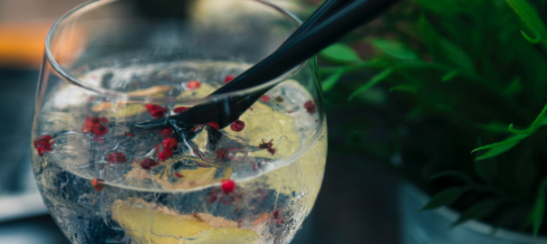 4 types of gin